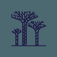 Online Blockchain Course