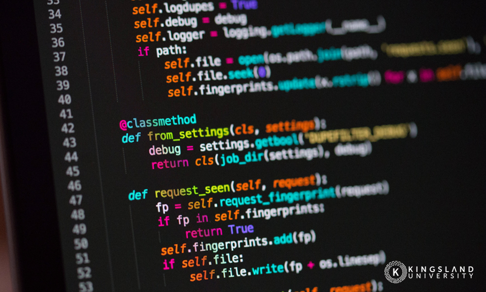 Python Code Script