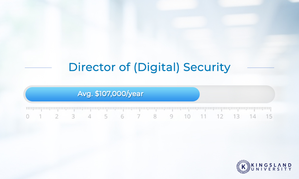 Director Digital Security