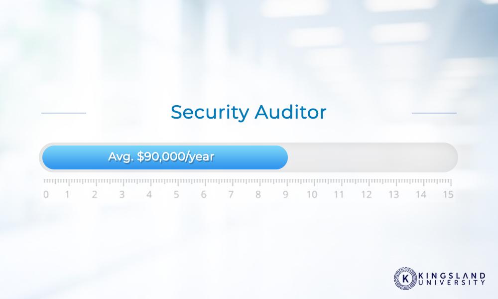 Security Auditor