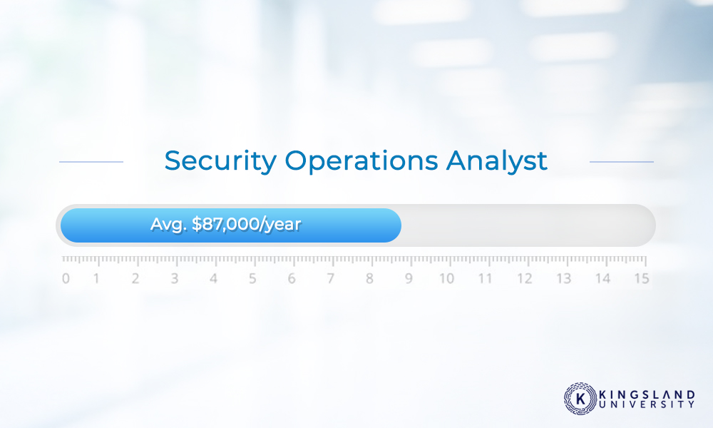 Security Operations Analyst