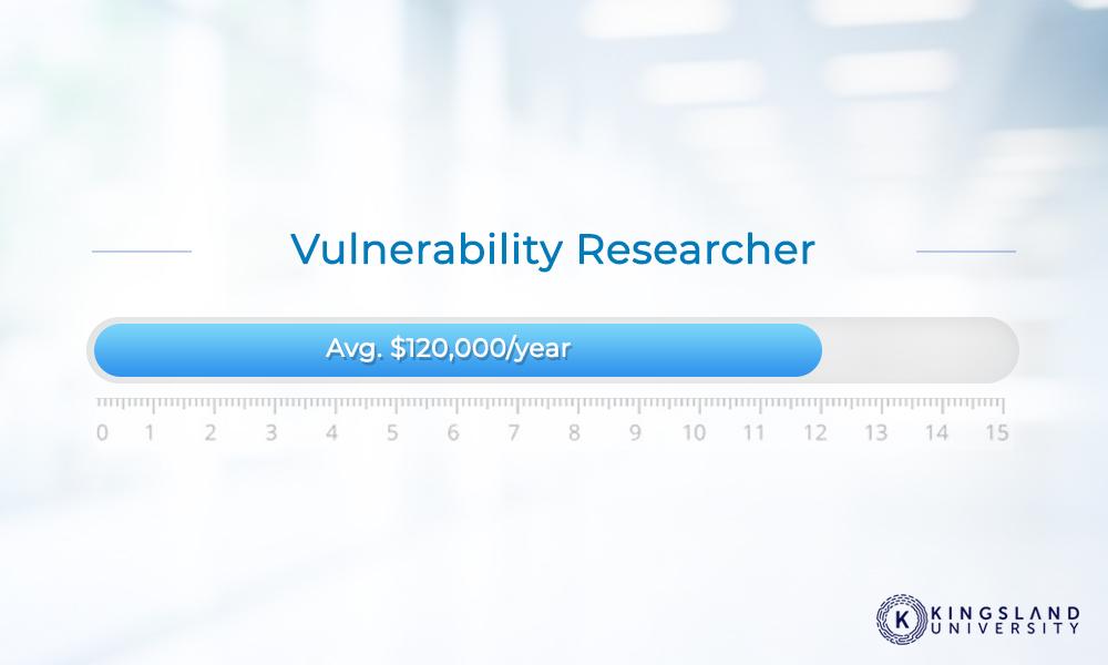 Vulnerability Researcher