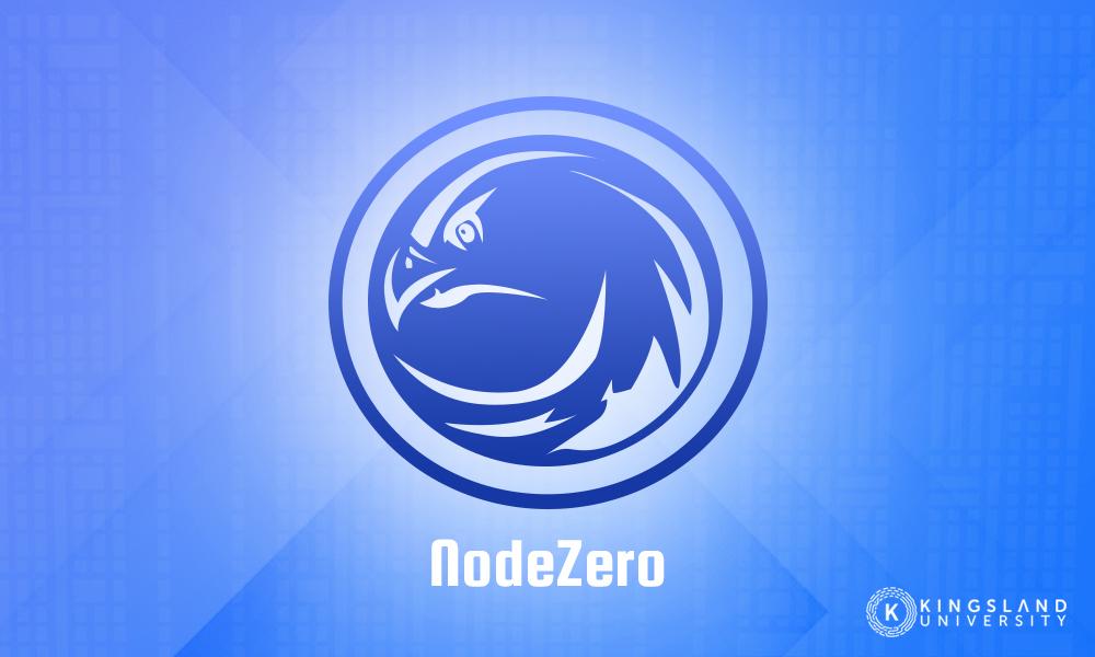 Node Zero